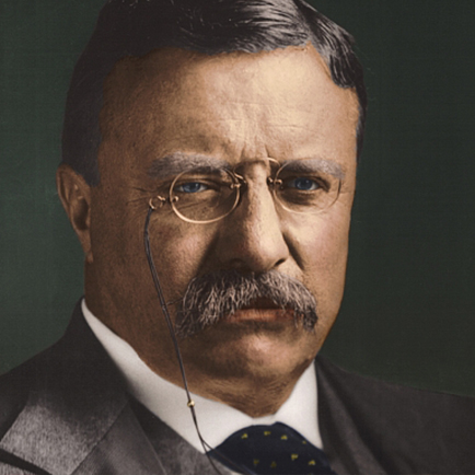 Teddy Roosevelt Saved Football